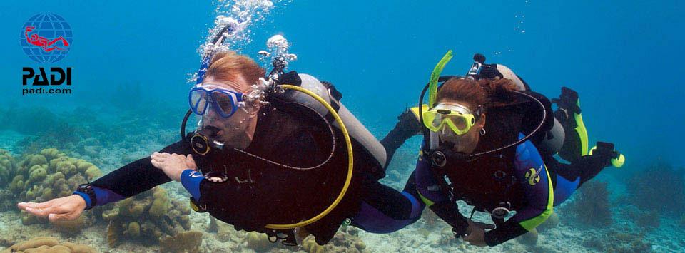 Underwater compass navigation