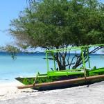 small fishing boats called sampan
