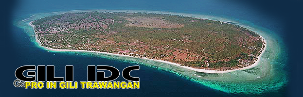 Looking to take your PADI Instructor Development Course (IDC) Indonesia
